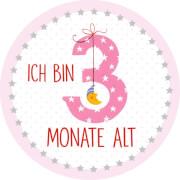 BabyGlück - Meilenstein-Sticker: Babys erstes Jahr, rosa, 20 Sticker